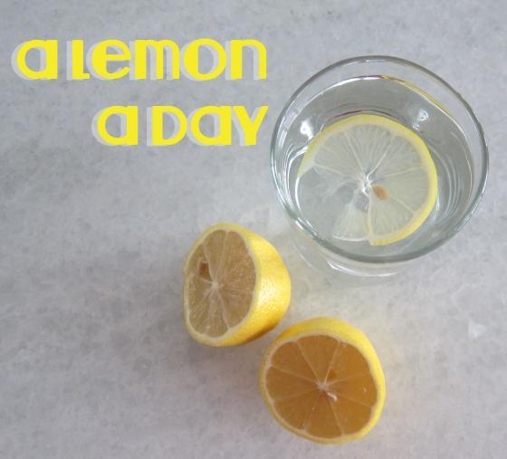 aLemonADay